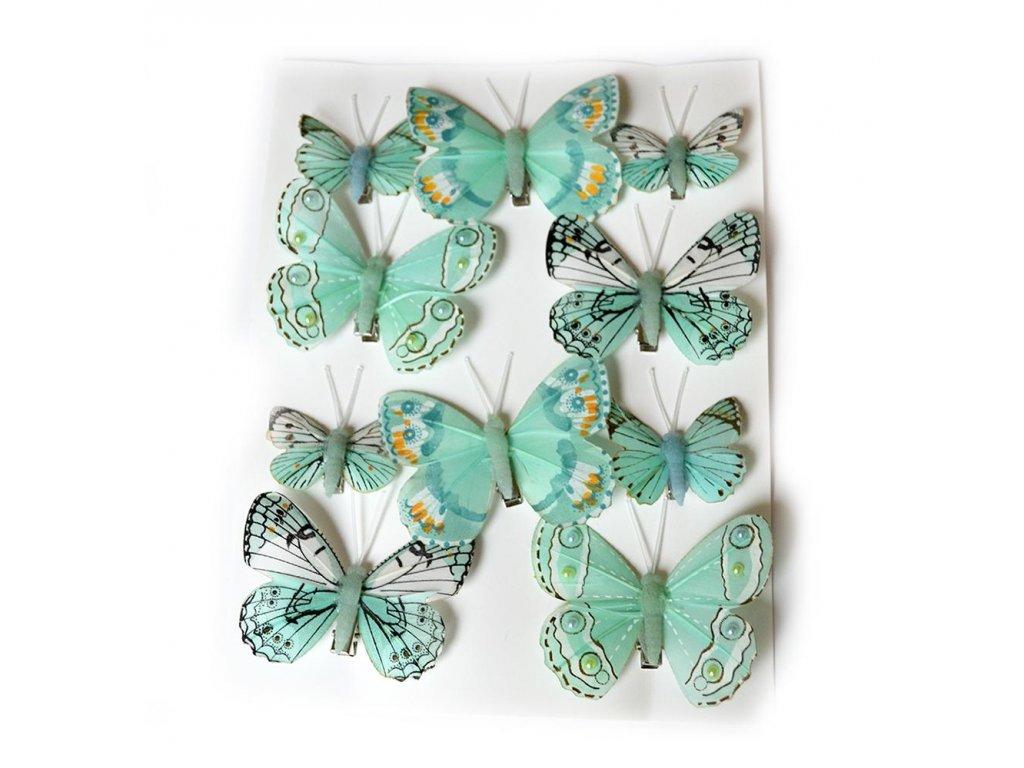 Motýlci na skřipci - mint