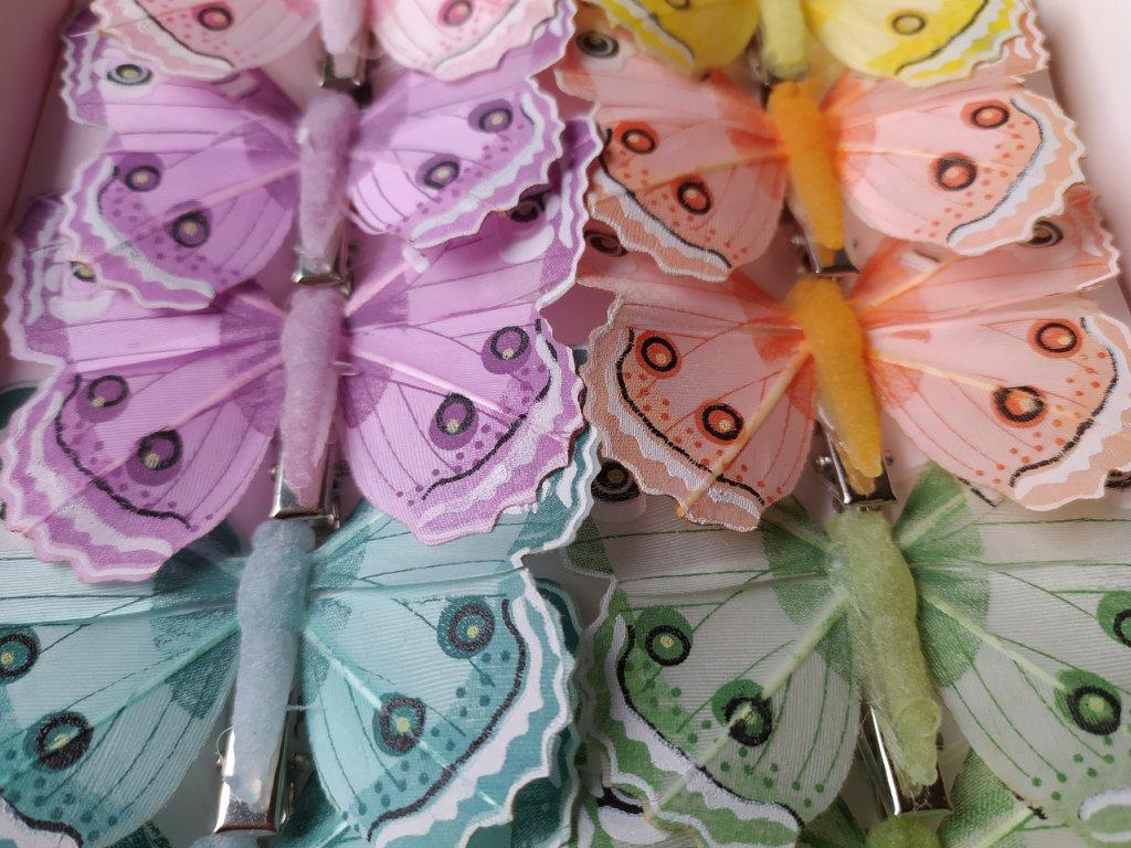 Motýlci na skřipci - pastelové barvy