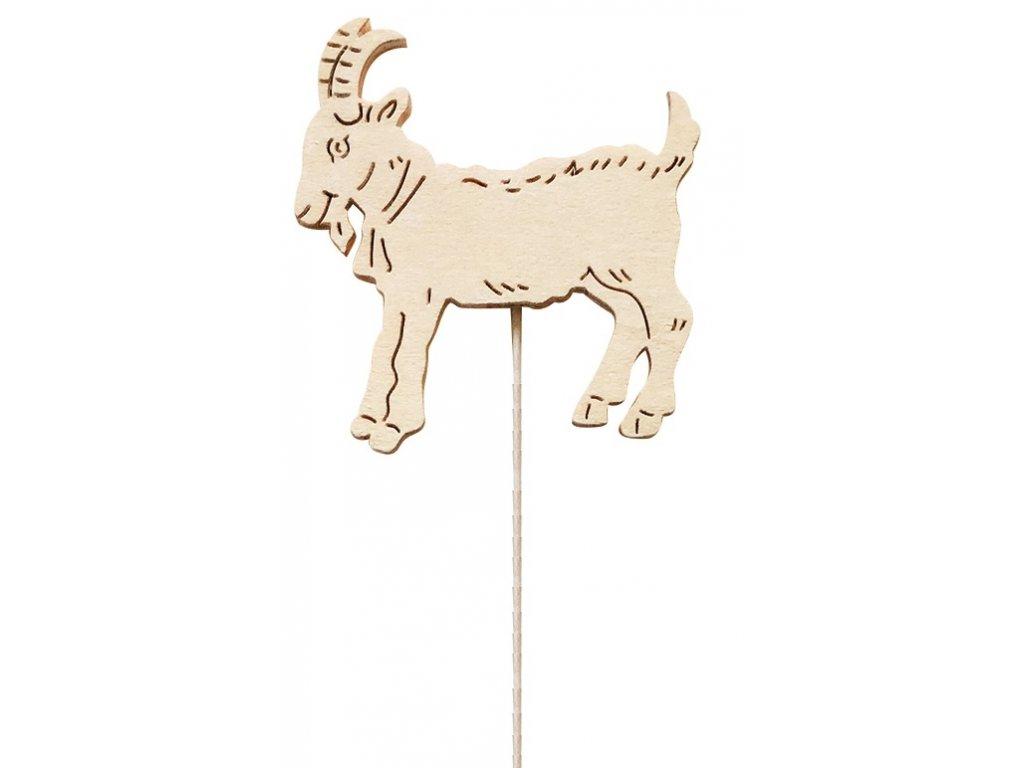 Koza - zápich