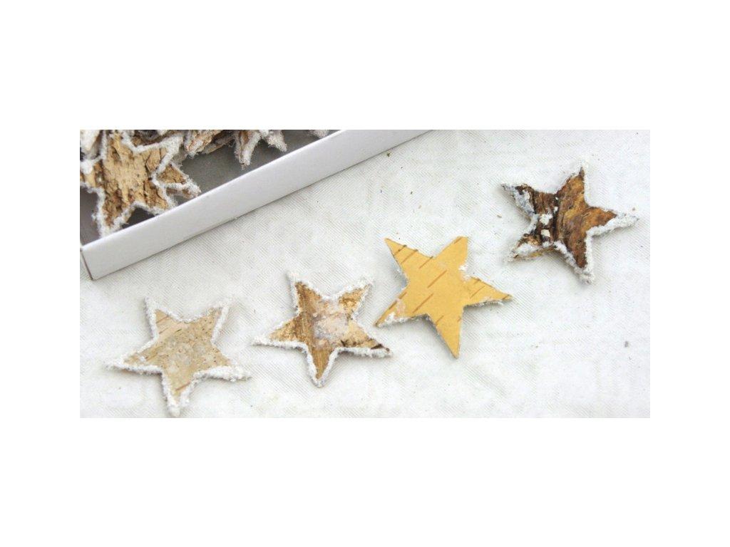 Hvězda Bříza 2,5 cm, 10ks