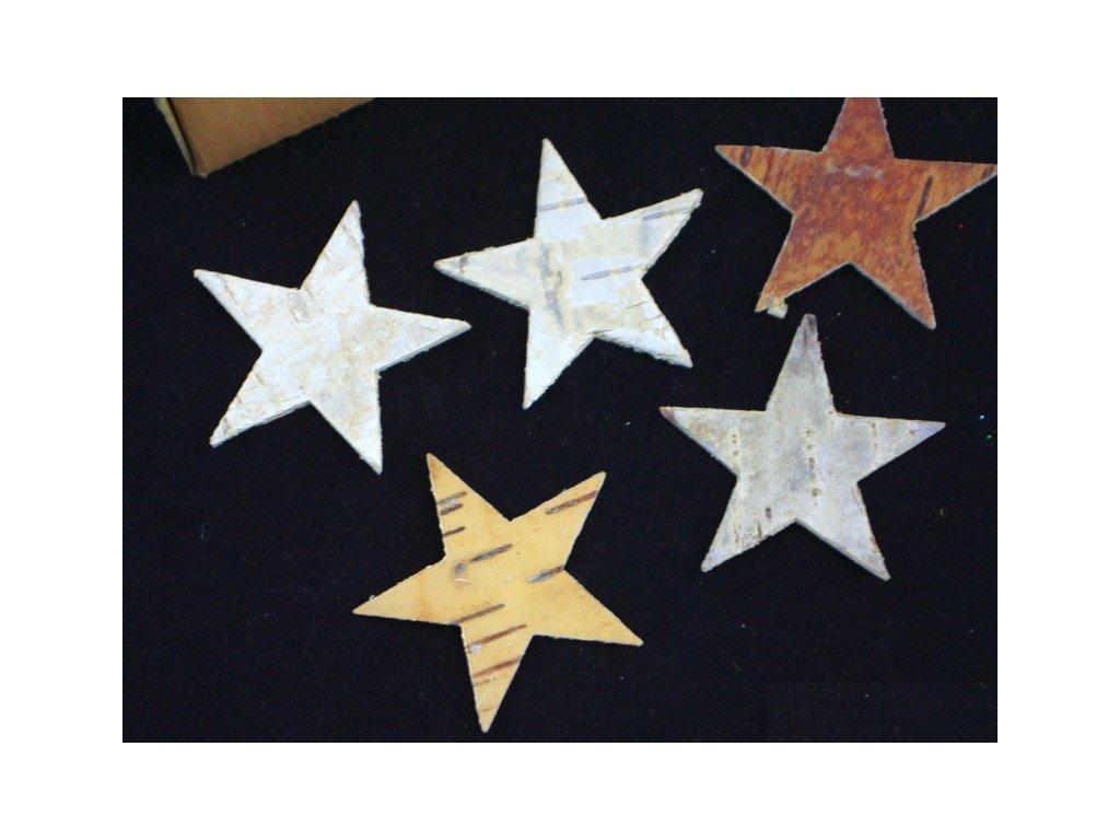 Hvězda Bříza 4,5 cm, 10ks