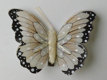 Motýlci na skřipci - béžová