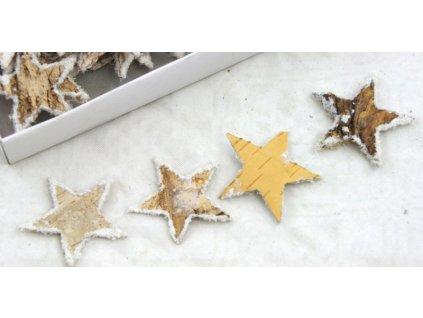 Hvězda Bříza 4,5 cm, 10ks , zasněžené