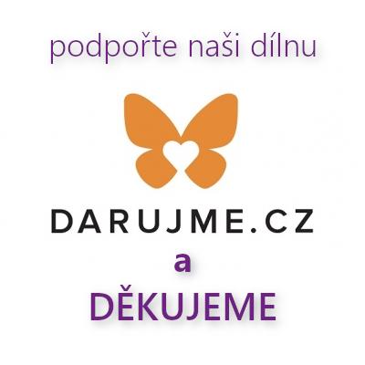 Darujme - podpořte Lemniskátu finančním darem