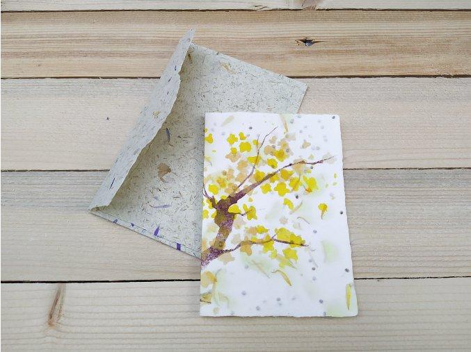 Rostoucí přání - semínka rukoly, s obálkou