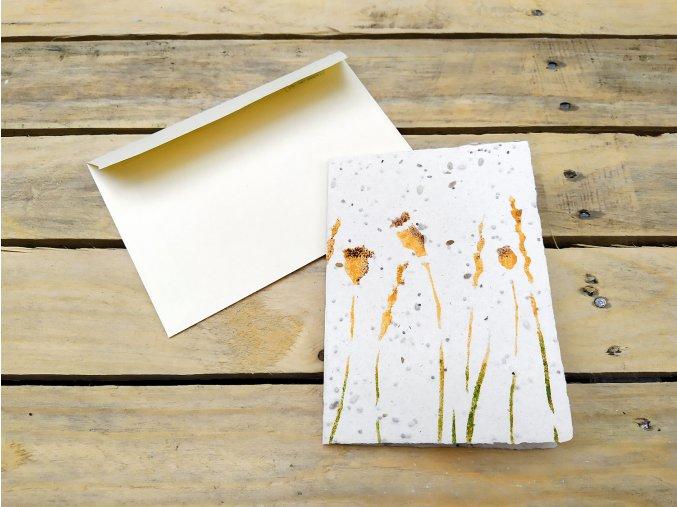 Rostoucí přání - makovice, s obálkou