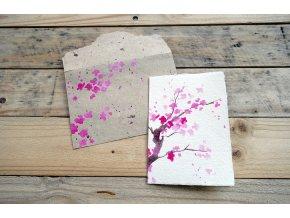 Přání moruše a bavlny, motiv strom sakura