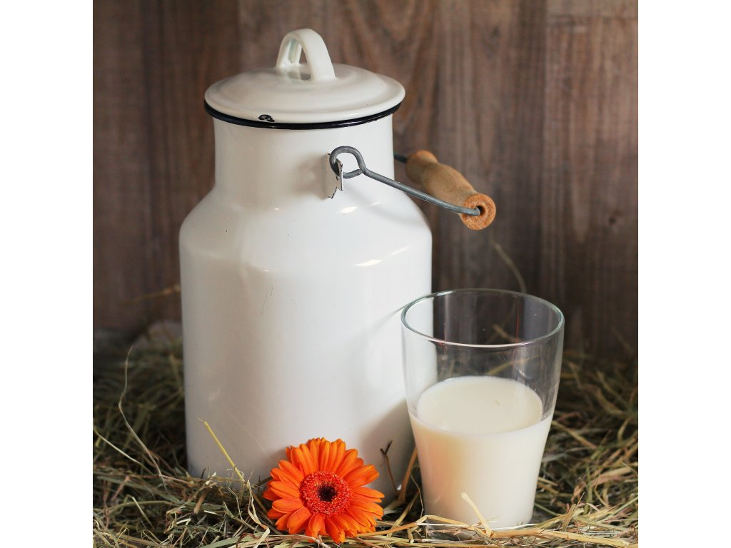 milk can 1990075 1920