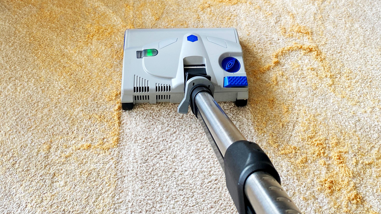 Suché čištění koberce s Lindhaus LD600