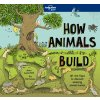 55384 How Animals Build 978178656620 cover