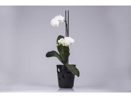 Květináč na orchidej - černý  krásný a funkční doplněk do interiéru