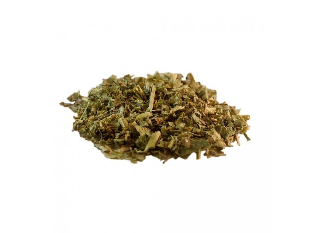 alchemilka-vnat-bylinny-caj