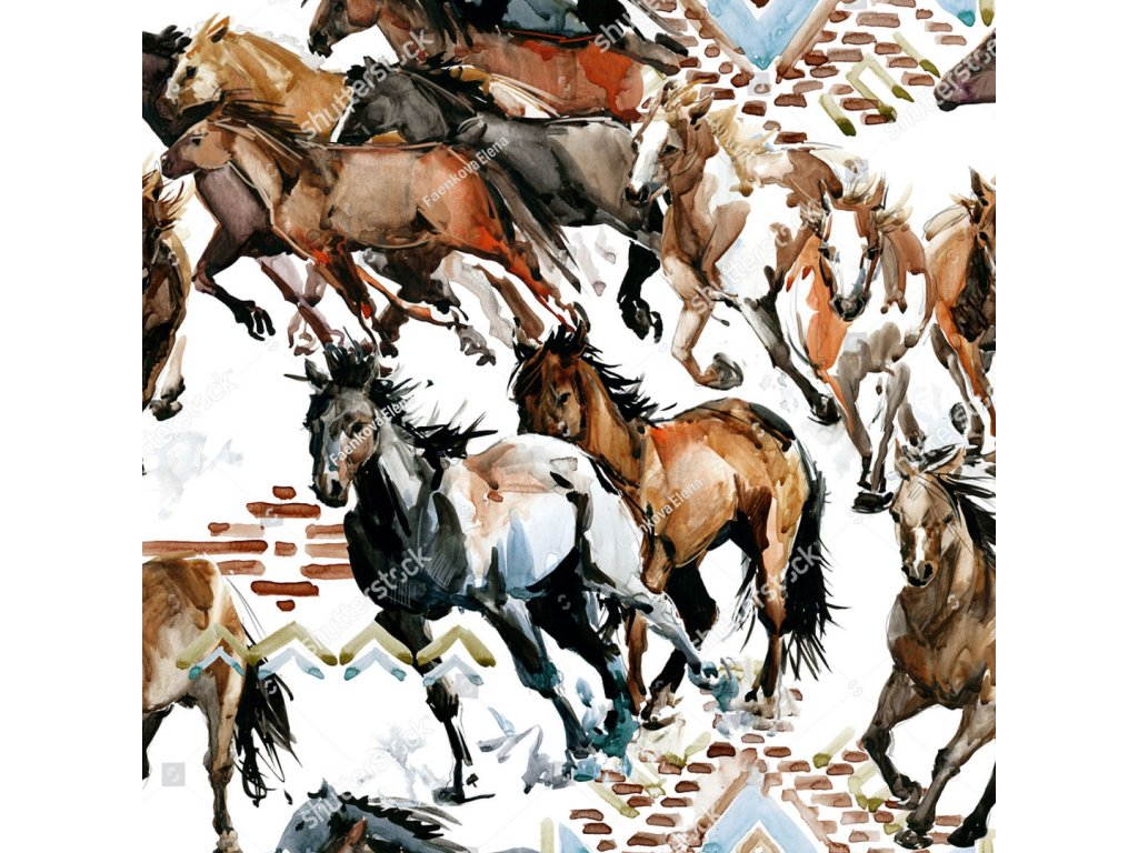 Y111 koně