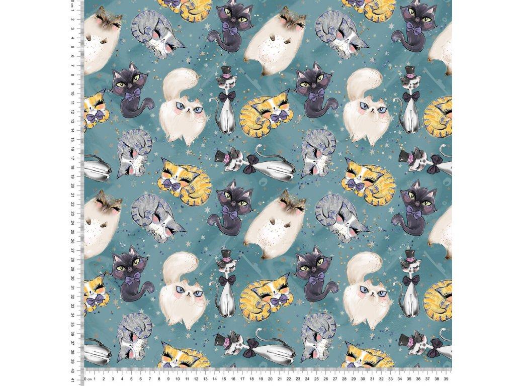 Y418 kočky v modrém