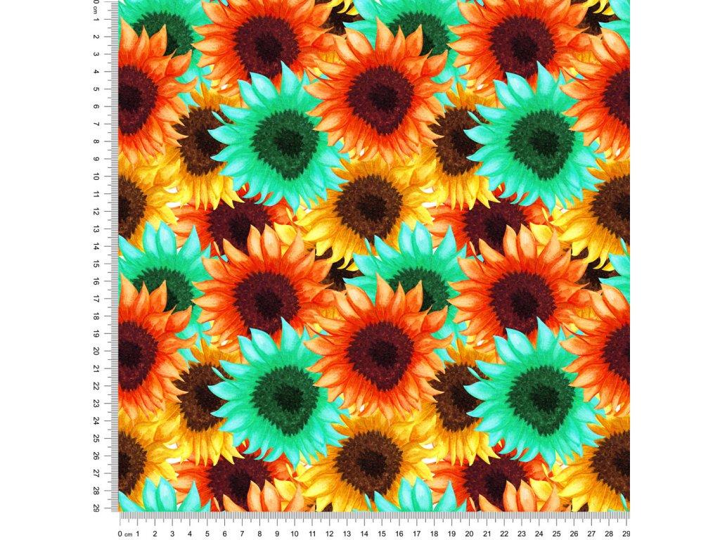 Y461 barevné slunečnice