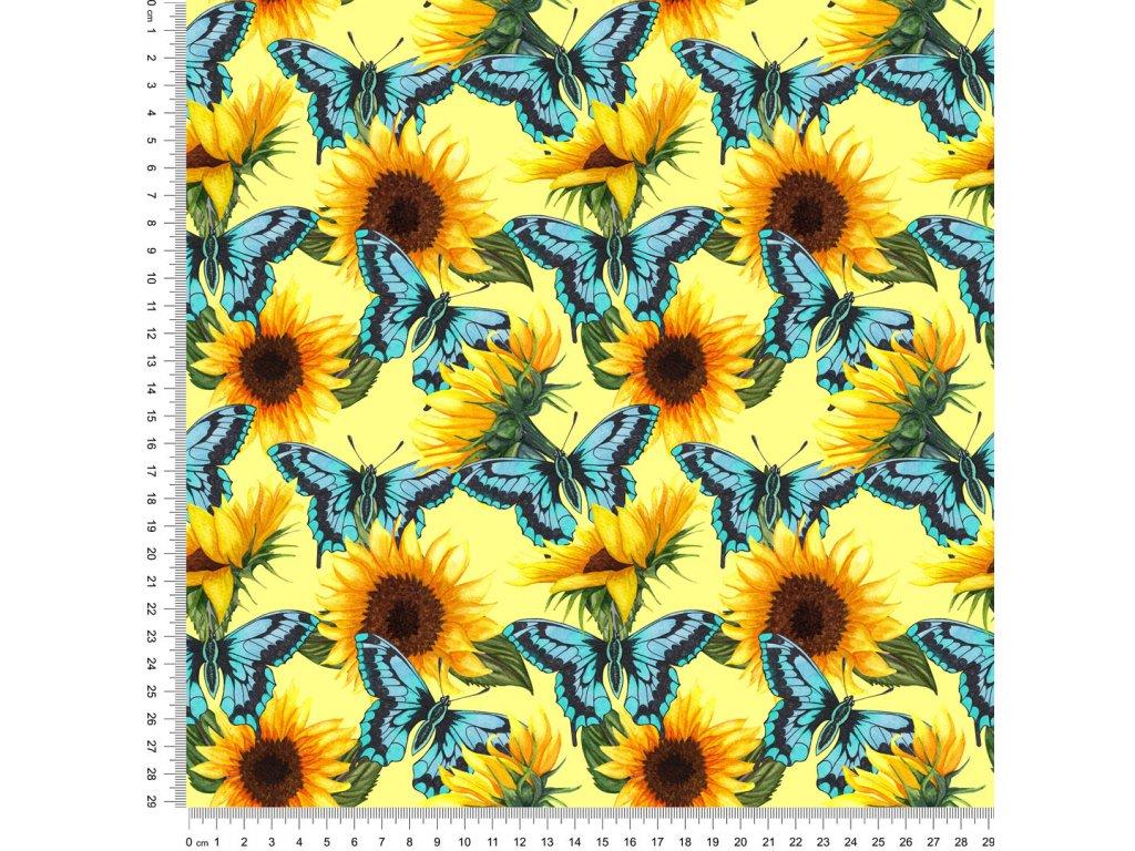 Y463 slunečnice s motýli