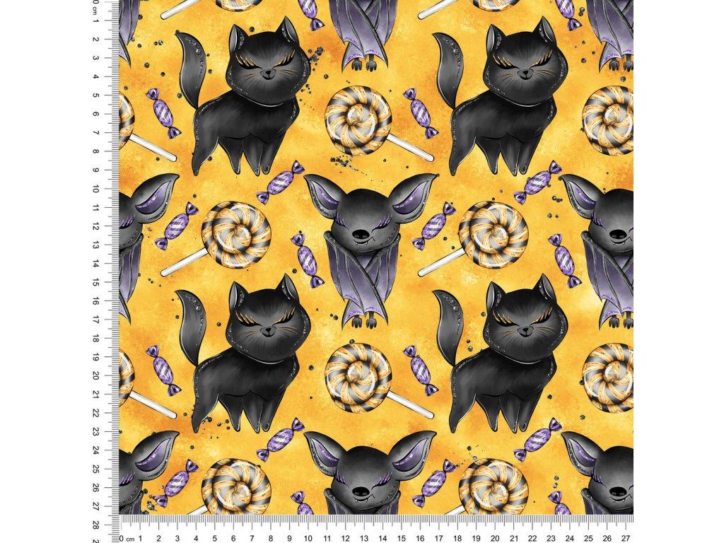 Y518 mlsné kočičky