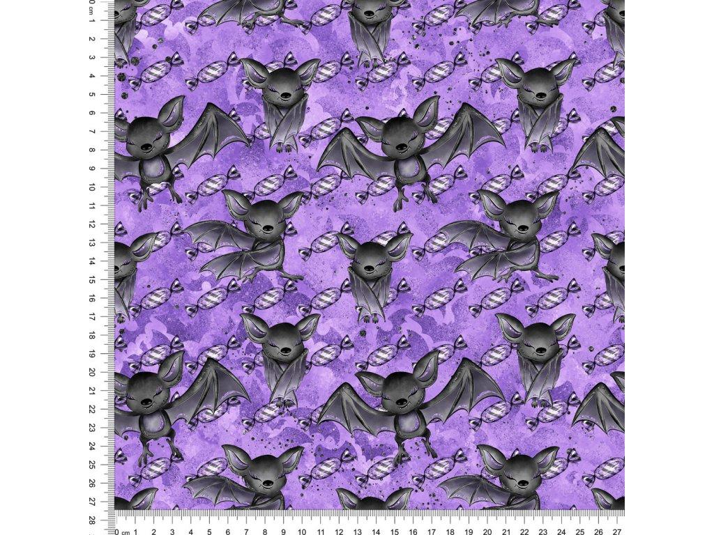 Y519 mlsní netopíři