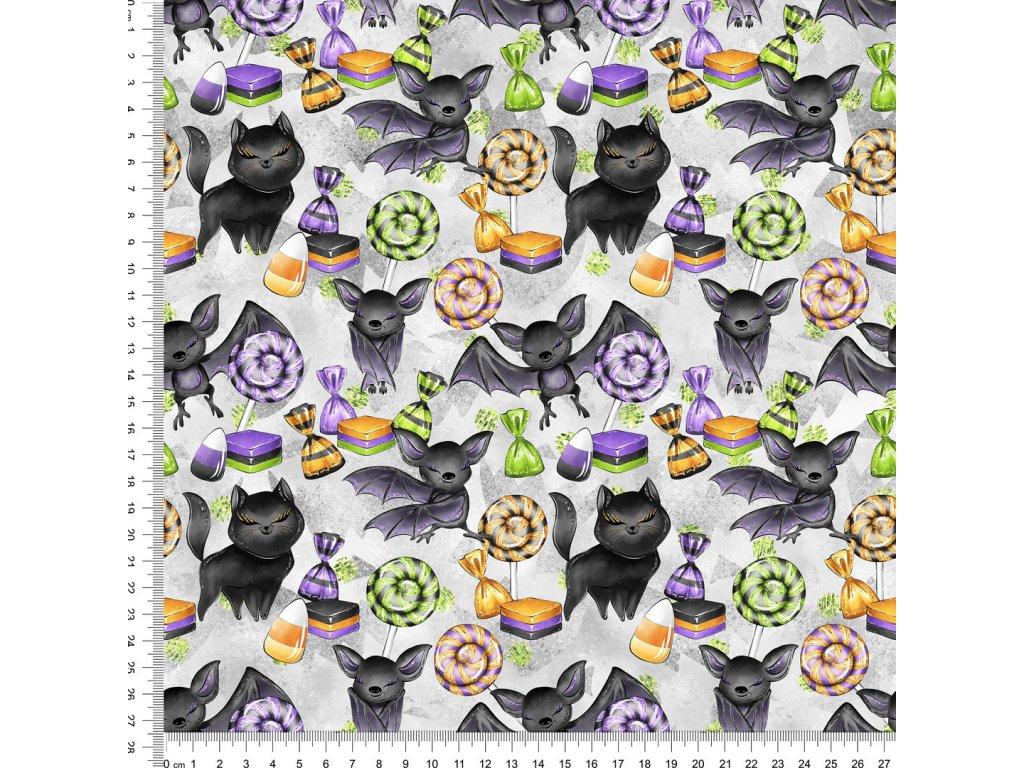 Y521 kočky a netopíři
