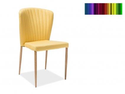 Jídelní židle - POLLY