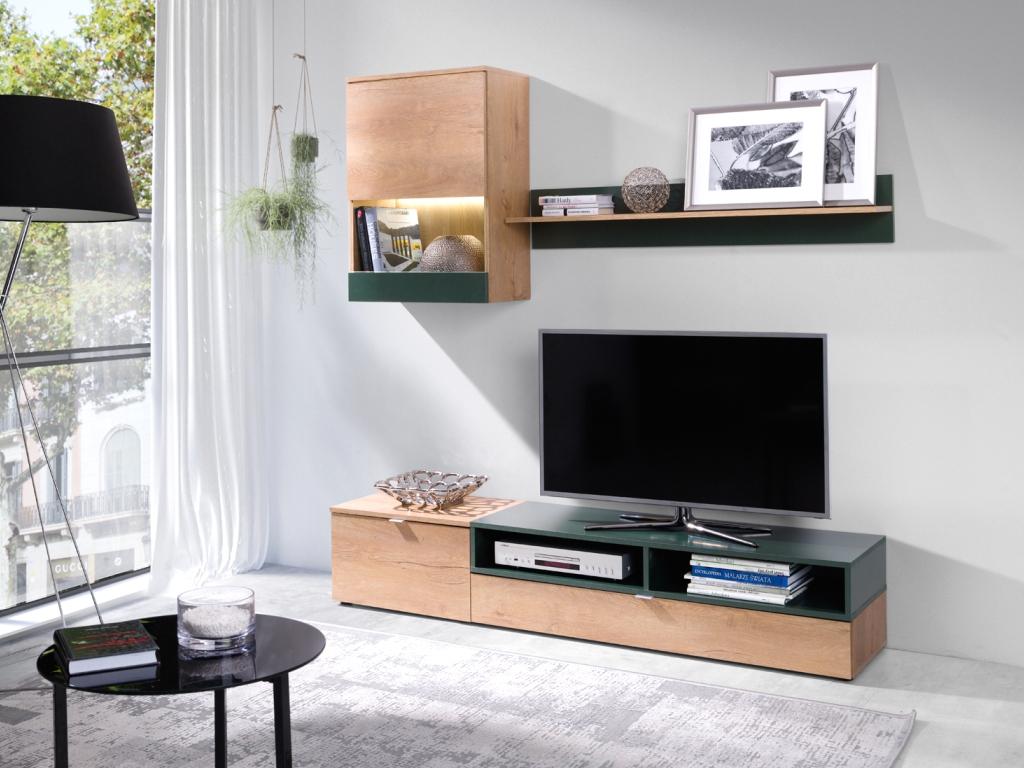 MAXIVA Obývací stěna - ROCO, dub lefkas/zelená