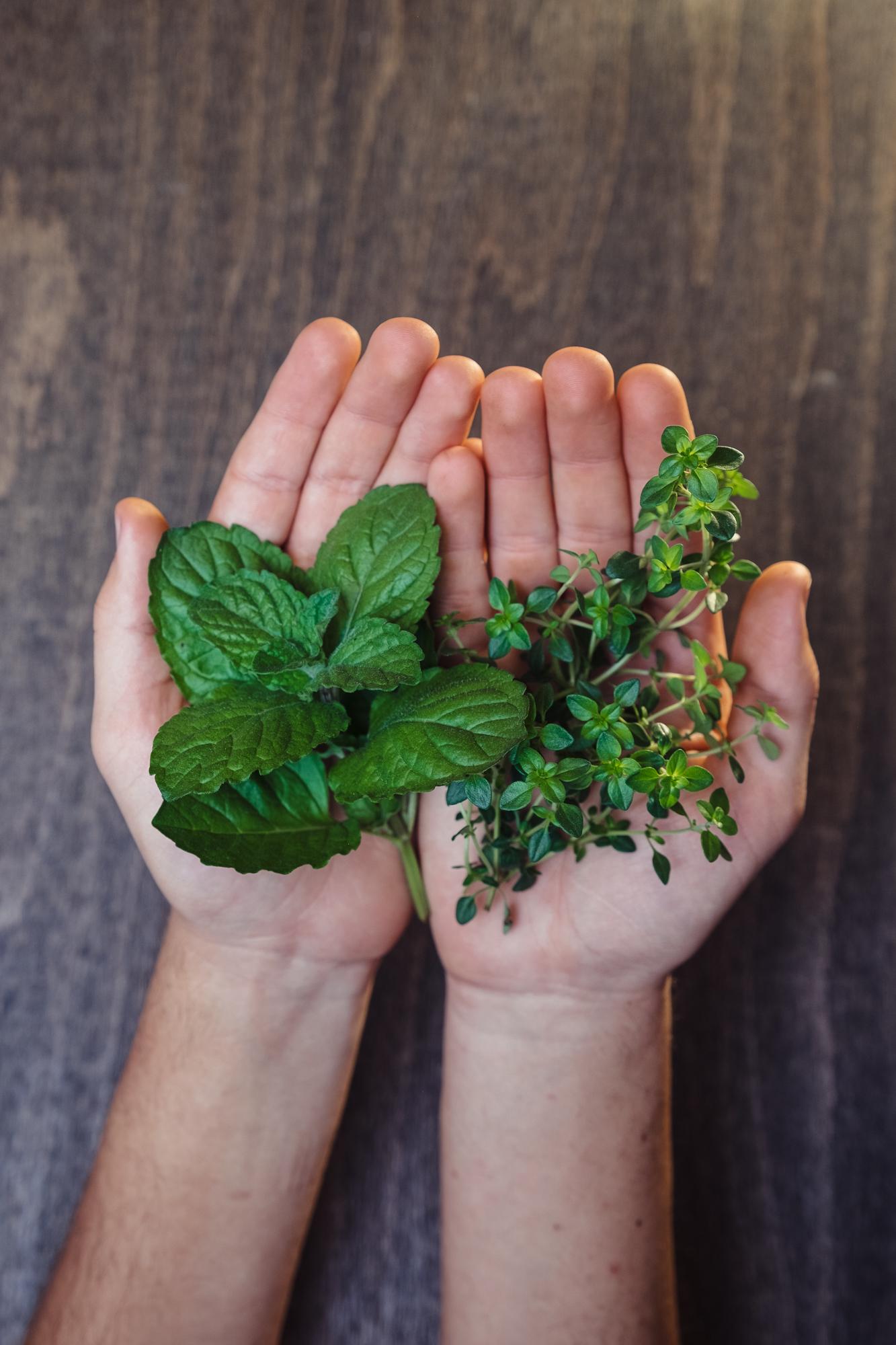 Prečo používame práve bylinky?