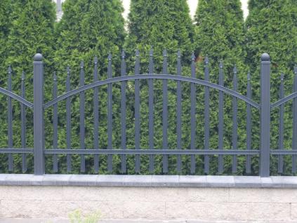 Kovové plotové pole -  Radius standard, grafit (Rozměry(š x v) 200 x 115 cm)