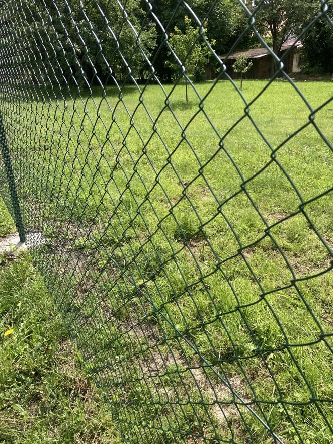 Pletivo poplastované výška 150 cm bez ND (2,5 mm; 55x55 mm; PVC; zelené)