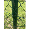 Poplastované pletivo STANDART bez ND výška 100 cm, drát 2,5 mm, oko 55x55 mm, PVC, zelené