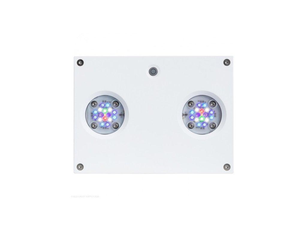 hydra 32 white 550x550