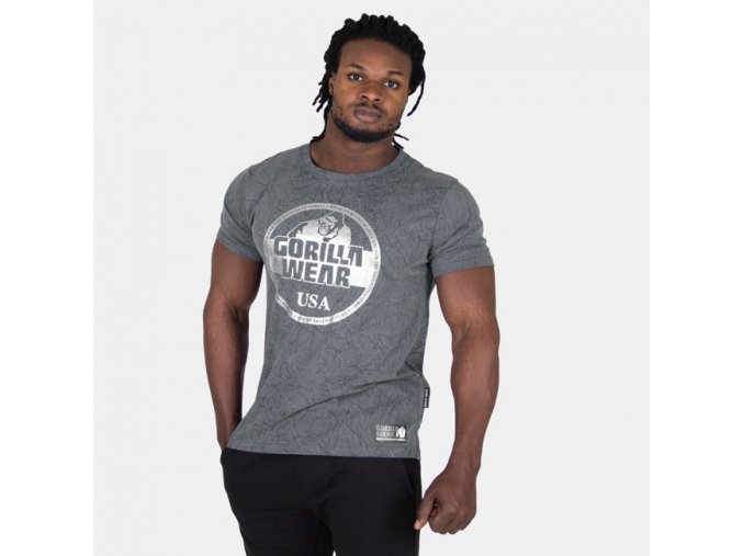 90530800 rocklin t shirt gray 1