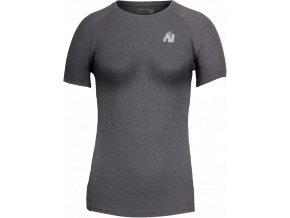 aspen t shirt dark gray