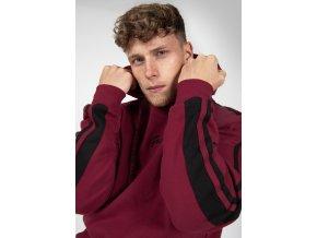 90716590 banks oversized hoodie burgundy red black 11