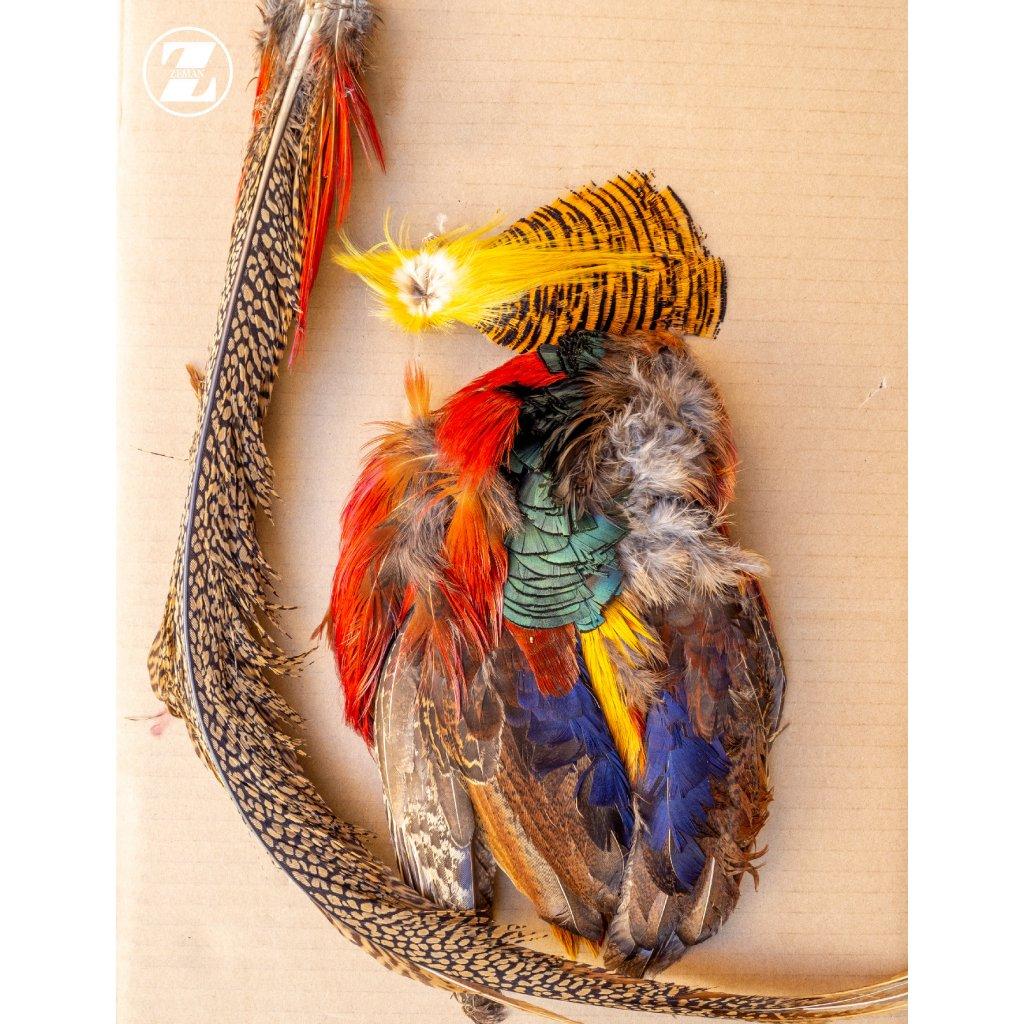 Bažantí skalp Veniard golden pheasant