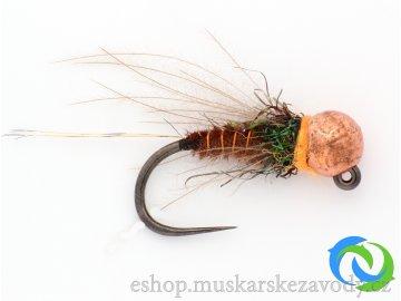 Bažantí nymfa - benelux - copper