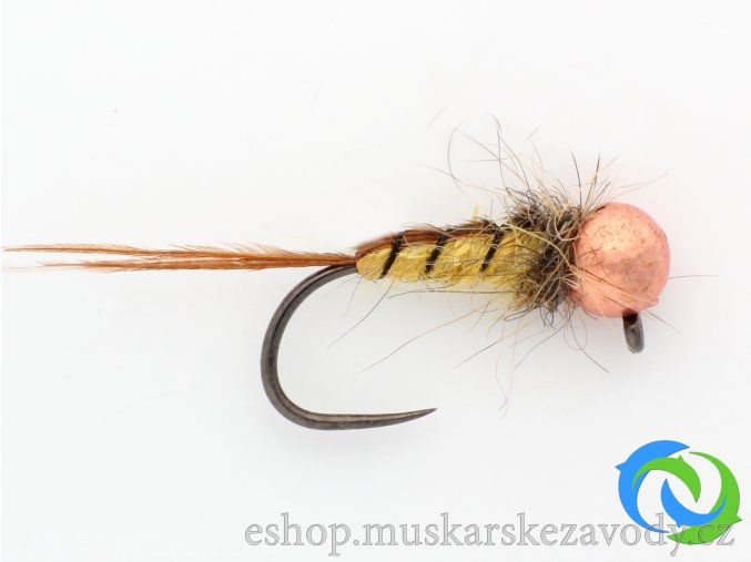 Larva chrostíka - copper