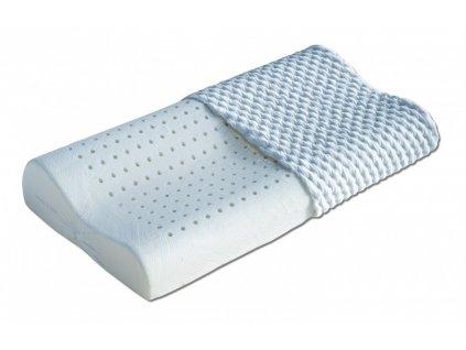 Luděk-polštář