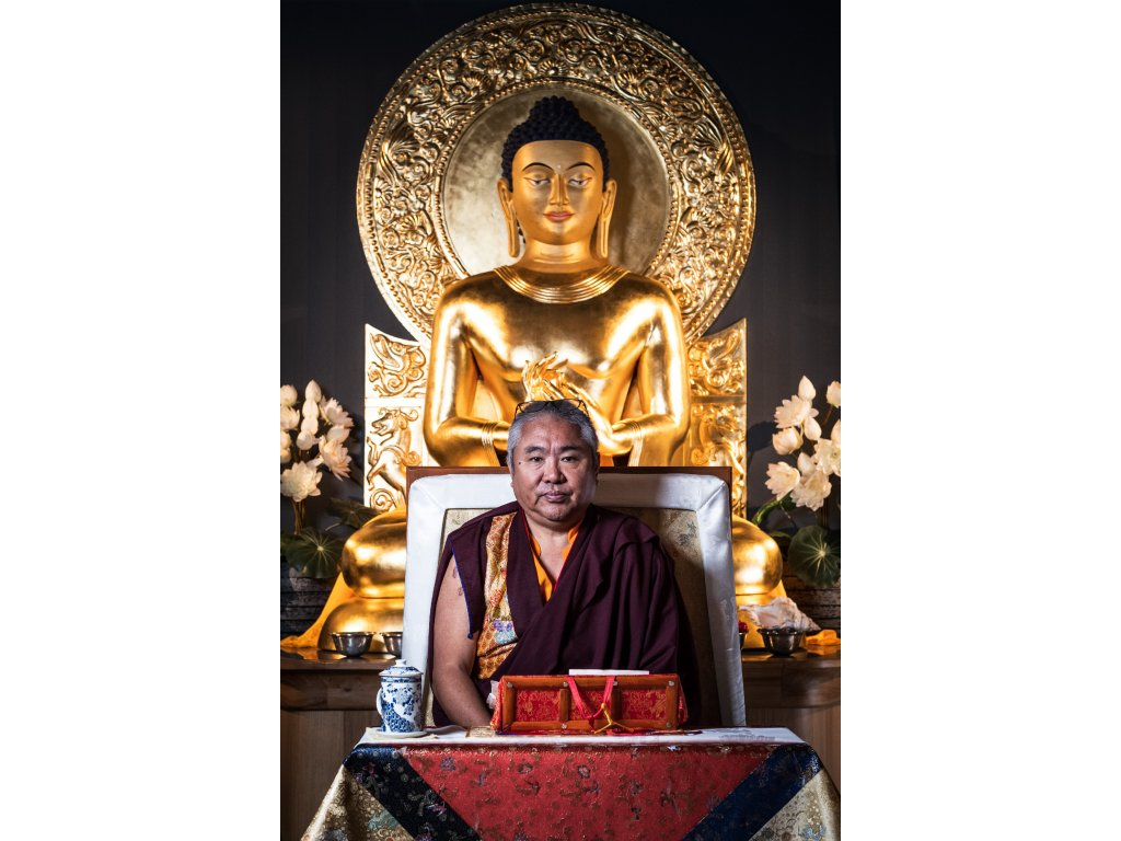 TKP THE DHARMA STUDIO Nedo Rinpoche THRONE (No logo) 2