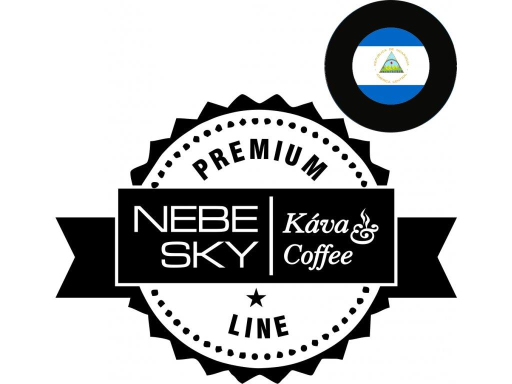 nicaragua premium logo