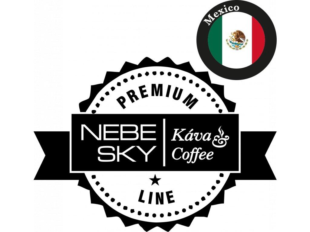 mexico premium logo