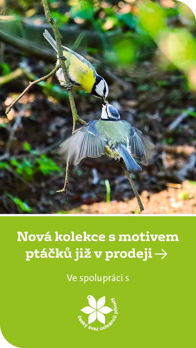 Nová kolekce - ptáčci
