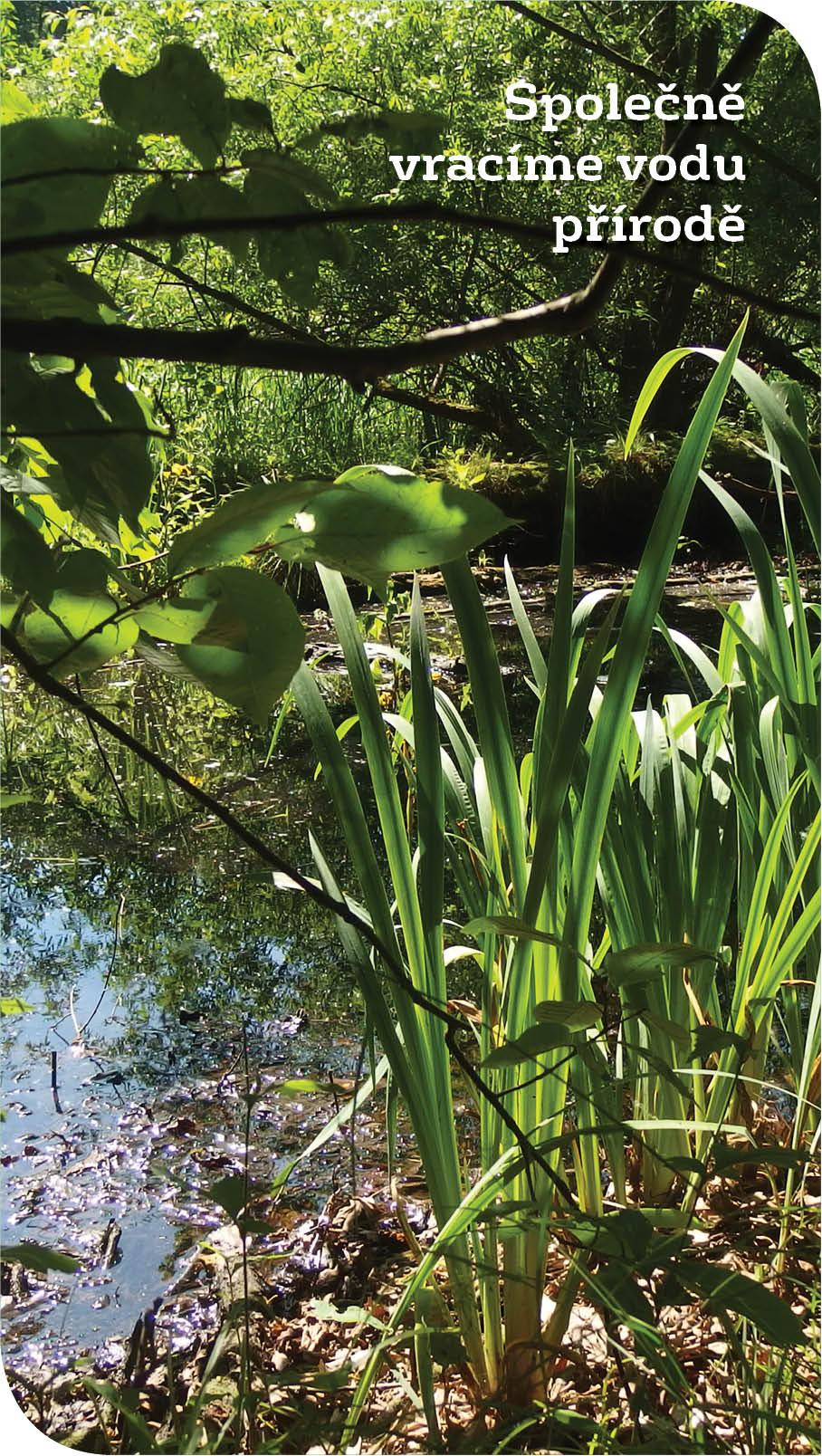 Jarní Společně vracíme vodu přírodě 2021