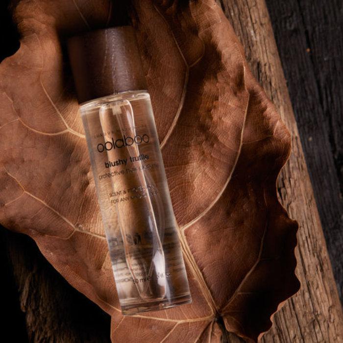 parfém a lesk