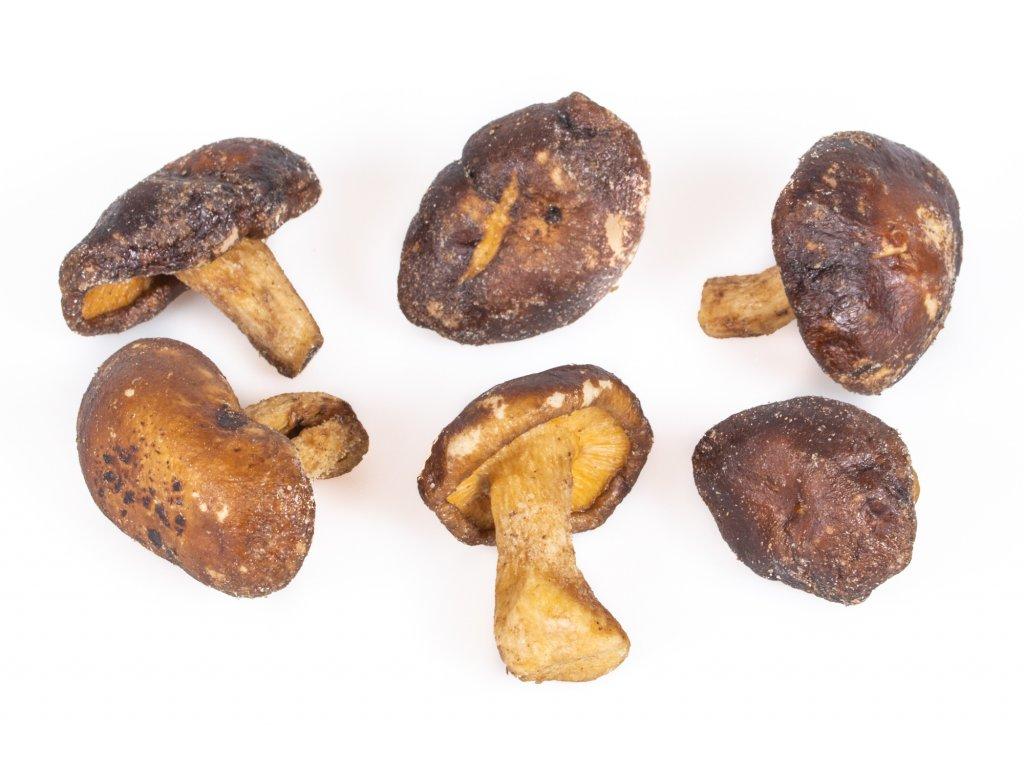 houby shiitake