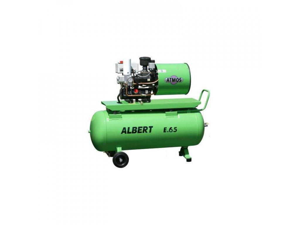 ALBERT E.65 V