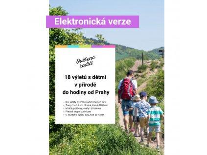 Elektronická verze (3)