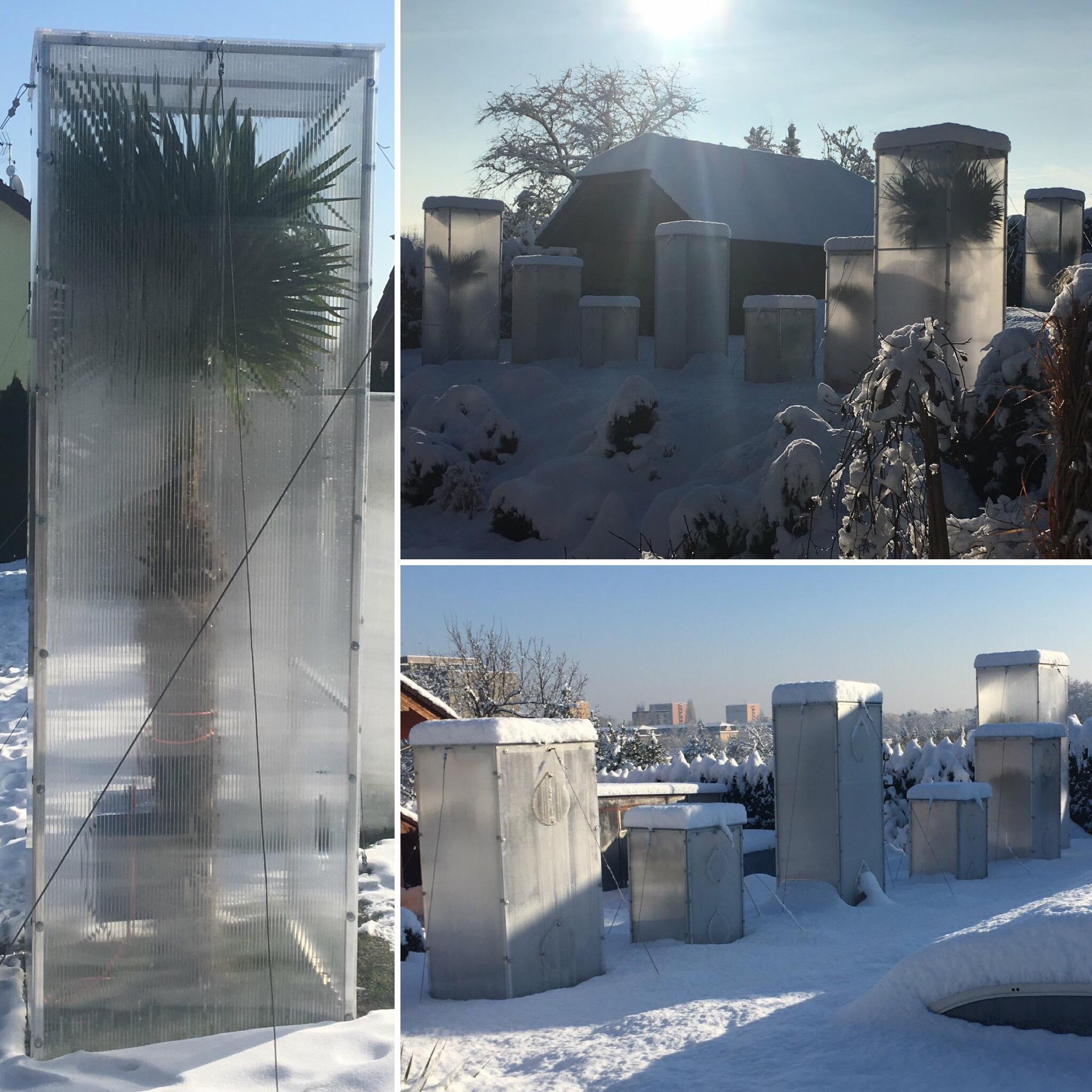 Zima - Skleníky