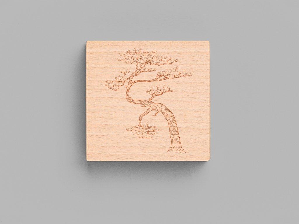 borovice 90x90
