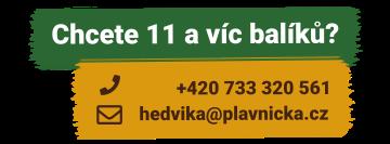 11-a-vice-baliku-sena