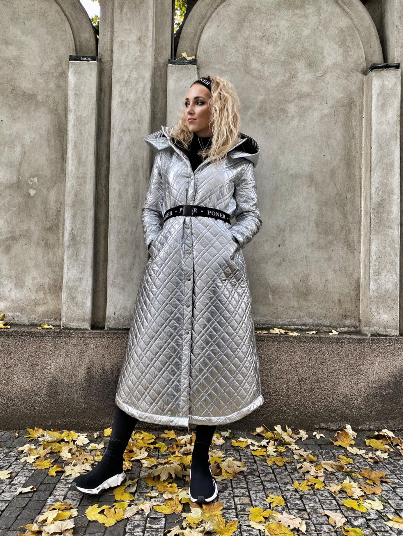 Stříbrný kabát